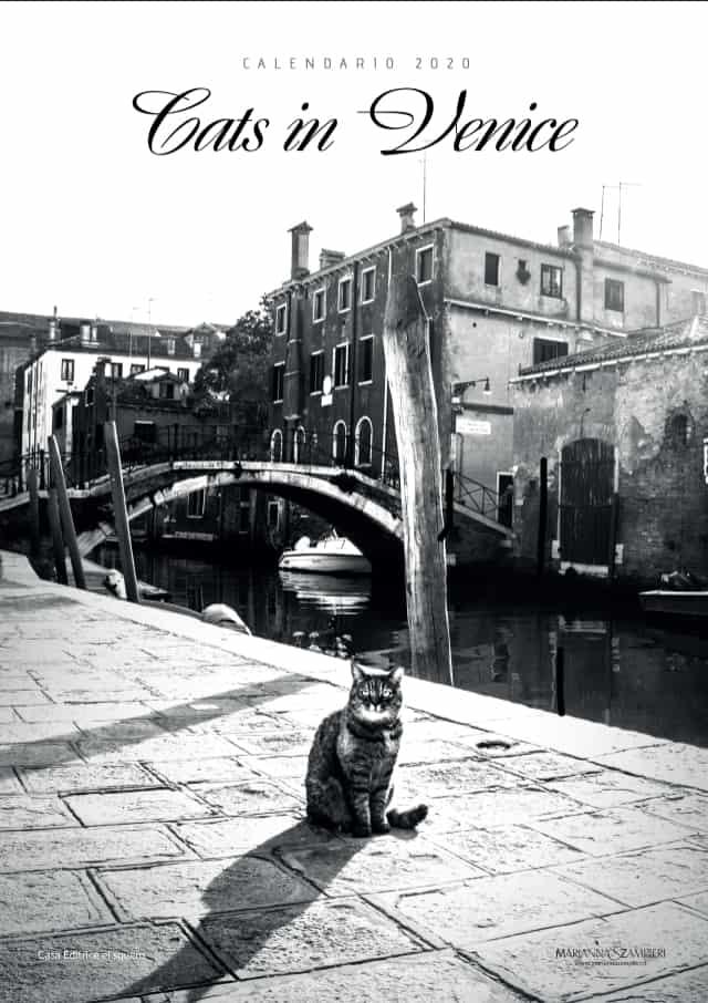 - Calendario Cats in Venice 2020