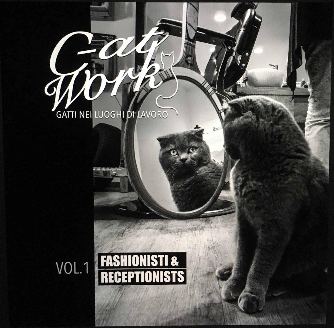 - C-AT Work Volume 1: Fashionisti e Receptionists