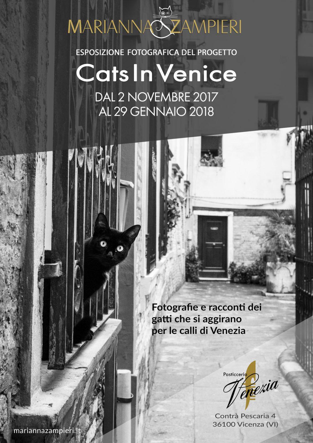 Cats in Venice la mostra