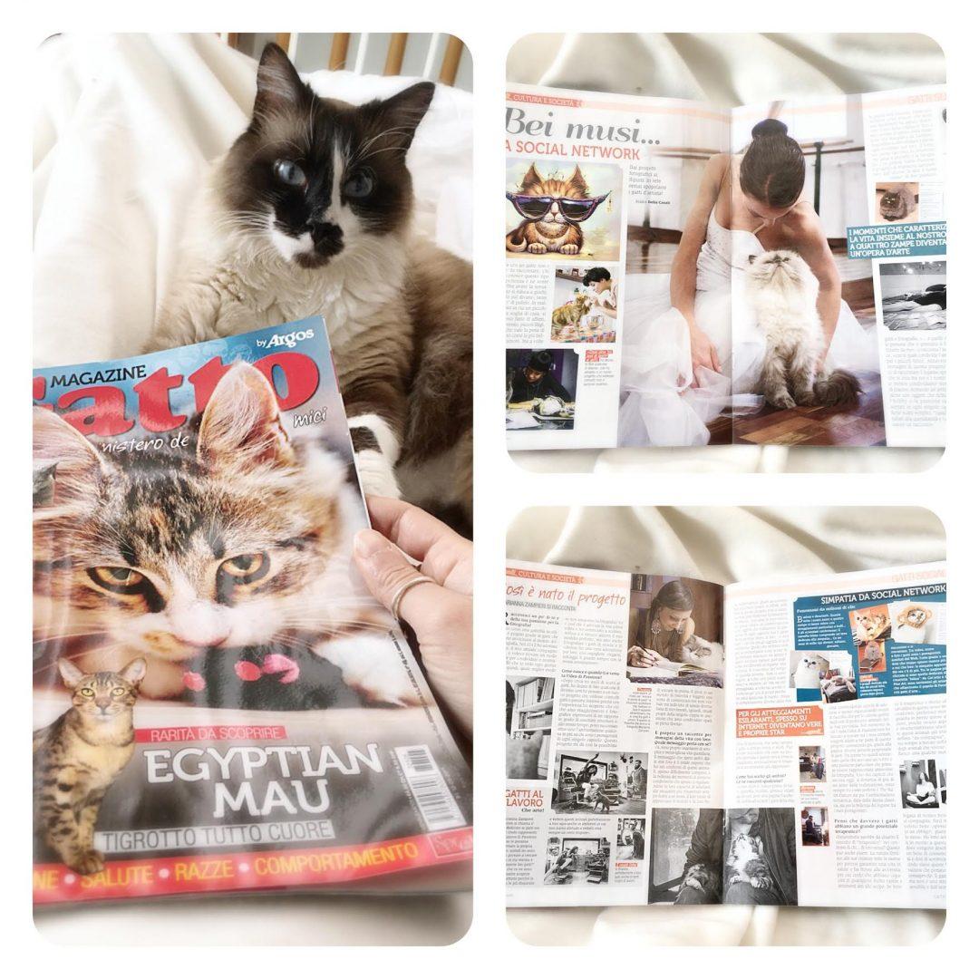uncategorized - Intervista e foto progetto Passions su Gatto Magazine di Giugno 2017